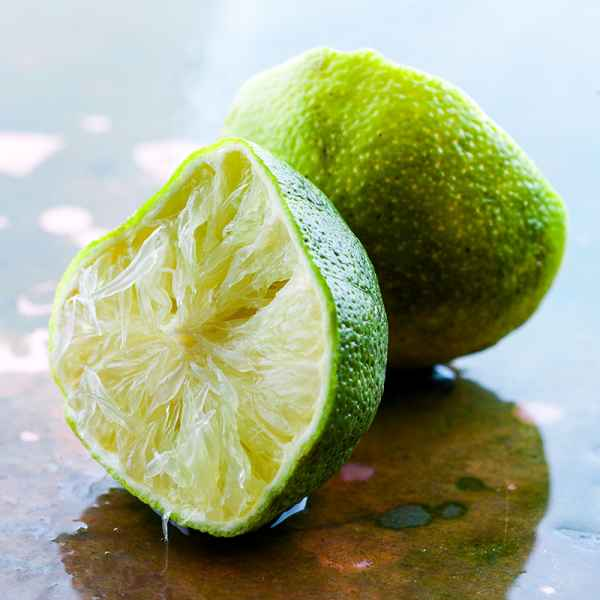 photographe nature morte citron vert