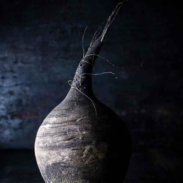 photographe nature morte radis noir