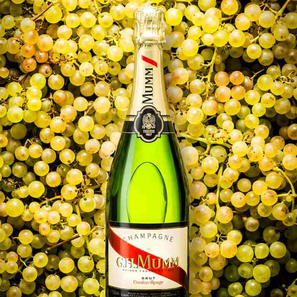 photographe nature morte bouteille mumm champagne pernod