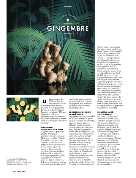 photographe culinaire elle et vire tendance gingembre