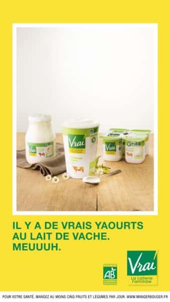 photographe culinaire vrai yaourts vache bio